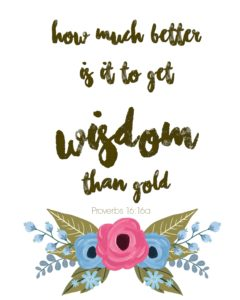 how-much-better-is-it-to-get-wisdom-than-gold